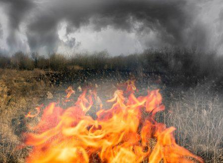 MISURA ANTINCENDIO URGENTE: ALLEVARE BESTIAME